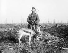 SOUTH AFRICAN FORCES ON THE WESTERN FRONT 1916-1918 (Q 10675) 'Nancy', the Springbok mascot of the 4th South African Regiment at the South African Brigade's memorial service at Delville Wood, 17 February 1918. Copyright: © IWM. Original Source: http://www.iwm.org.uk/collections/item/object/205195294