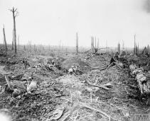 THE BATTLE OF THE SOMME, JULY-NOVEMBER 1916 (Q 4417) Battle of Bazentin Ridge, 14-17 July 1916. Soldiers digging a communication trench through Delville Wood. An officer observing from the ruins of Longueval Church. Copyright: © IWM. Original Source: http://www.iwm.org.uk/collections/item/object/205220027