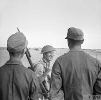 THE CAMPAIGN IN NORTH AFRICA 1940 - 1943 (E 18522) A British soldier gives a V-for-Victory sign to German prisoners captured at El Alamein, 26 October 1942. Copyright: © IWM. Original Source: http://www.iwm.org.uk/collections/item/object/205192925