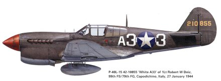 Curtiss-P-40L-Warhawk-USAAF-42-10855-79FG99FS-A33-Robert-Deiz-Italy-1943-0A