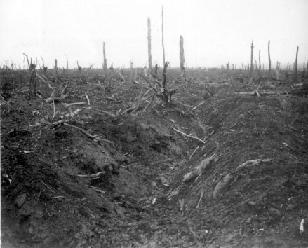 German_trench_Delville_Wood_September_1916